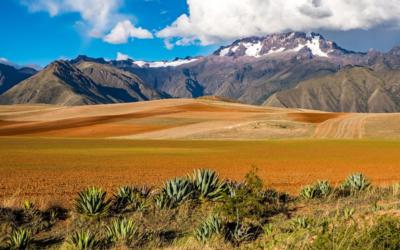 2016 – Bolivie