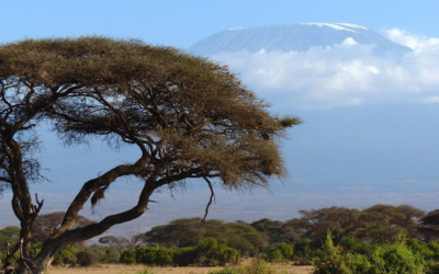 2017 – Kenya